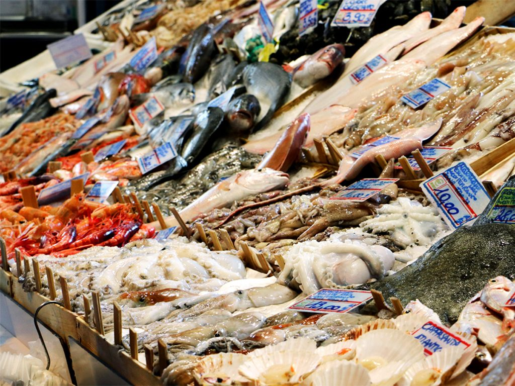 Fresh Fish and Seafood straight from the Mediterranean Sea